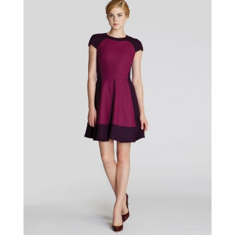 Ted Baker Linkah Color Block Dress